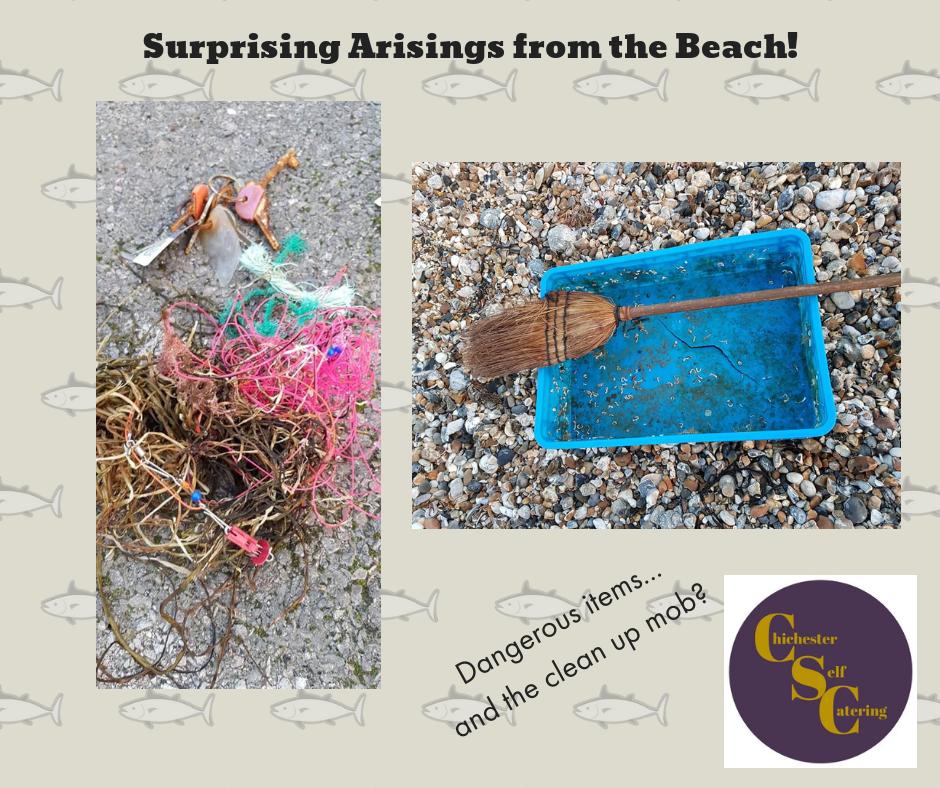 Surprising-Arisings-from-the-Beach Surprising arisings from the beach!
