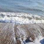 P1010198-150x150 We're going to the Beach! Beach! Beach...
