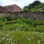 oldbarnsAmberley-150x150 Amazing Amberley Gardens