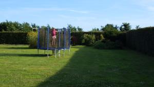 20160731_183020-300x169 New trampoline!