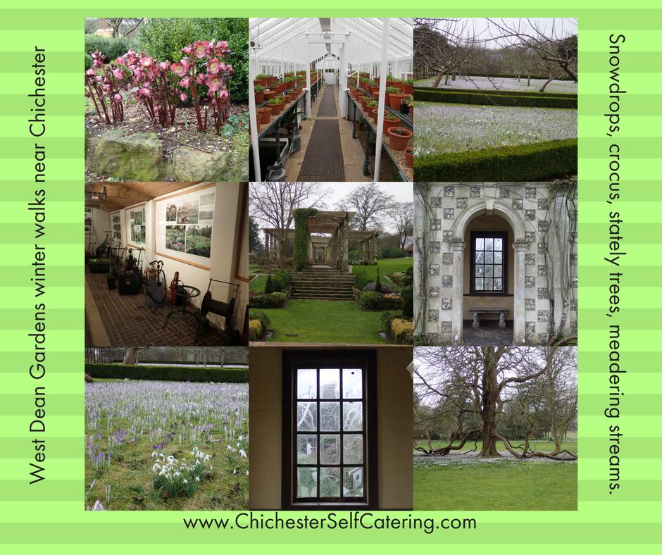 West-Dean-Winter-Walks West Dean Winter / Early Spring Gardens