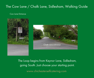 CowLane.chalkLane1-300x251 A 2-hour dog walk locally from Chichester Self Catering