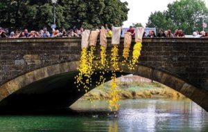 Arundel-Festival-duckrace-300x191 Blog