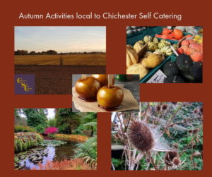 Autumn-Activities-local-to-Chichester-300x251 Blog