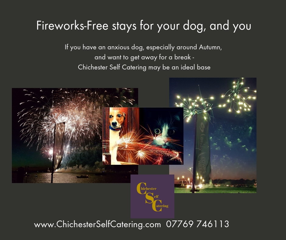 Fireworks-Free-stays-for-your-dog-and-you Fireworks-free visits for nervous dogs