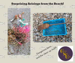 Surprising-Arisings-from-the-Beach-300x251 Blog