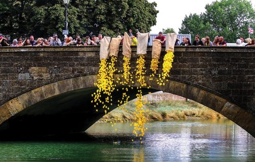 Arundel-Festival-duckrace